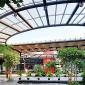 5 Inspirasi Aplikasi Atap Transparan